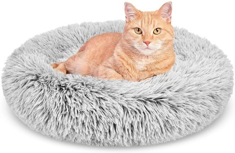 gasur cat bed_Amazon