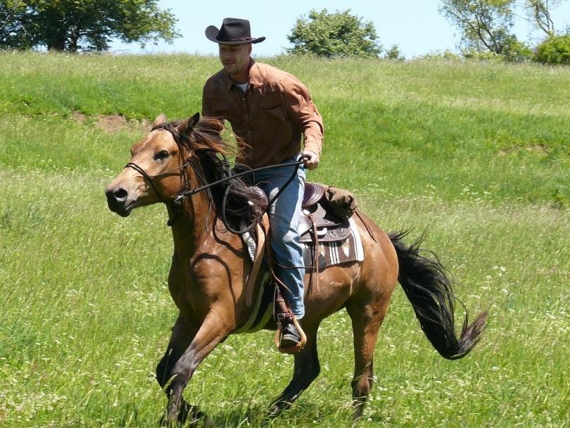 horse ridng_martinme2d_Pixabay