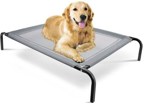 paws & pals dog bed_Amazon