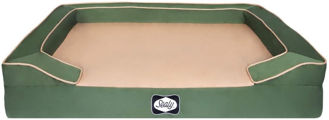 sealy dog bed