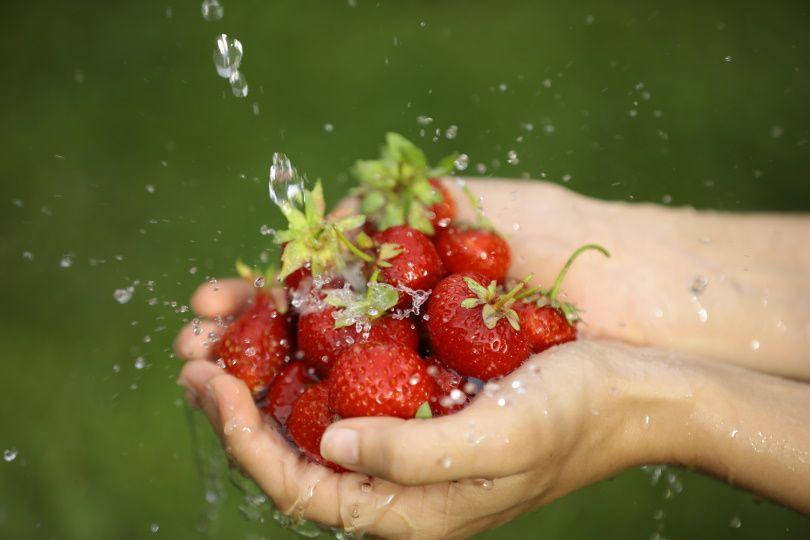 washing strawberries_Malikova Nina_Shutterstock