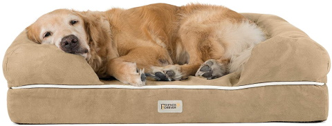 Friends Forever Orthopedic Dog Bed_Amazon