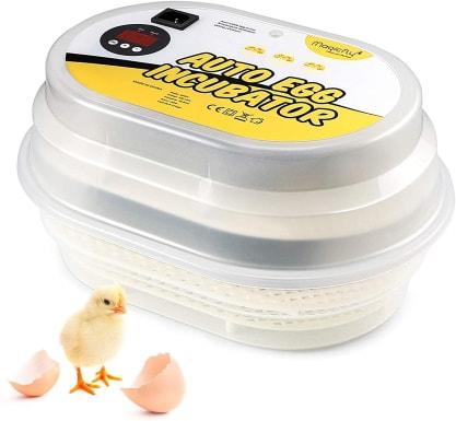 Magicfly Digital Mini Fully Automatic Egg Incubator_Amazon