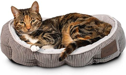Pet Craft Simple Sleeper Cat Bed