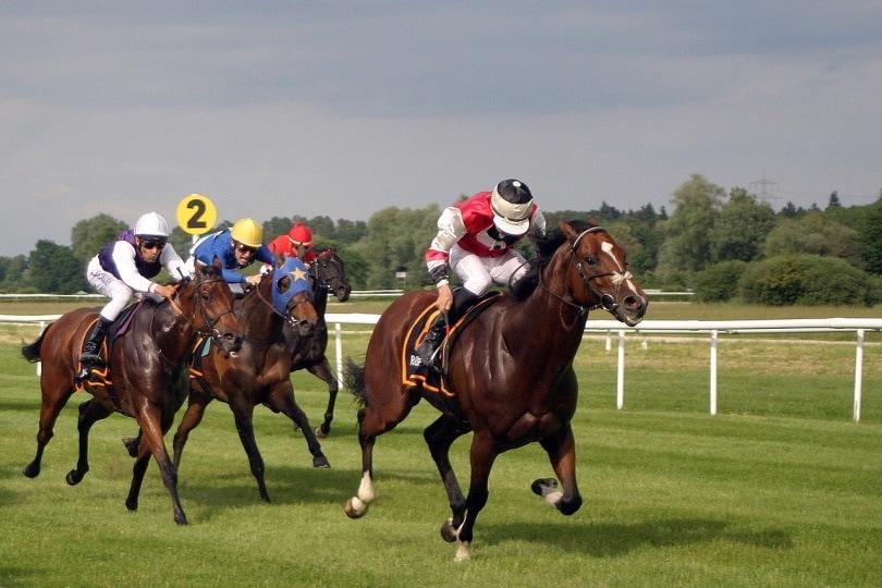 allowance horse race_dreamtemp_Pixabay