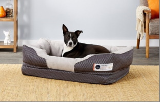 barksbar bolster dog bed_Chewy
