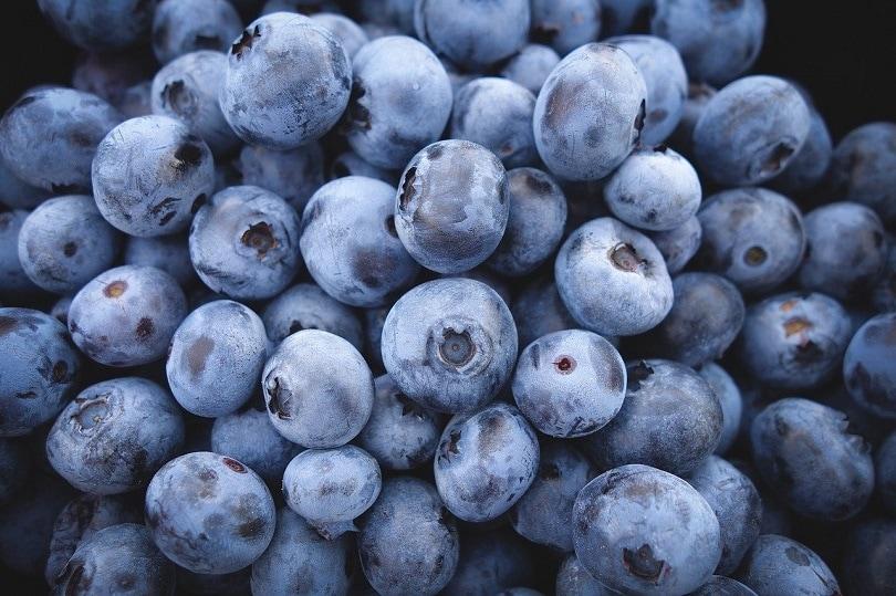 blueberries-pixabay