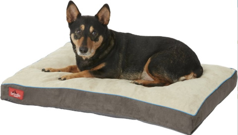 brindle dog bed_Chewy