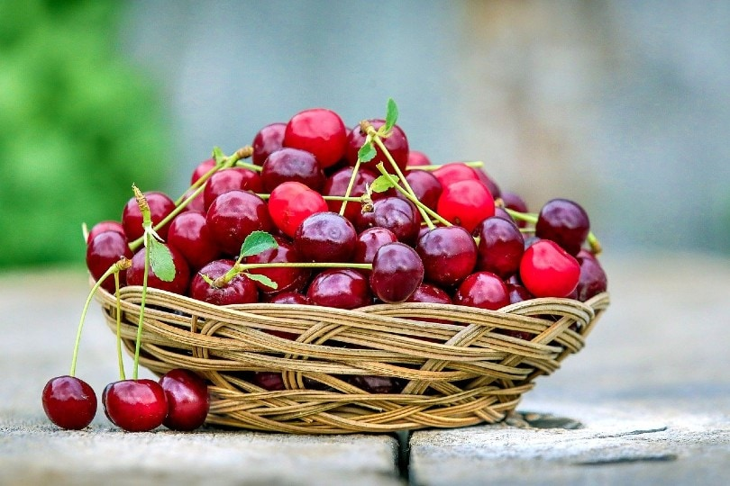 cherries in a basket