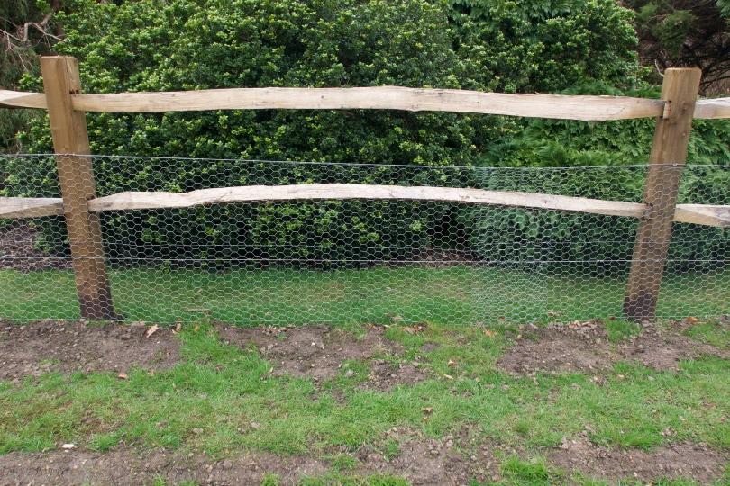 chicken wire fence_Jananz_Shutterstock