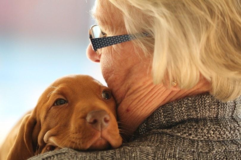 elderly woman hugging a Vizsla puppy