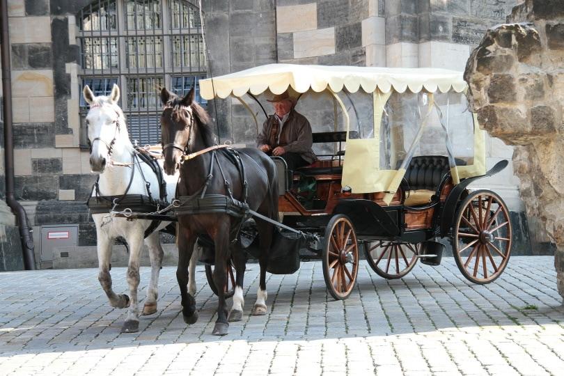 horse carriage_Holger Detje_Pixabayhorse carriage_Holger Detje_Pixabay