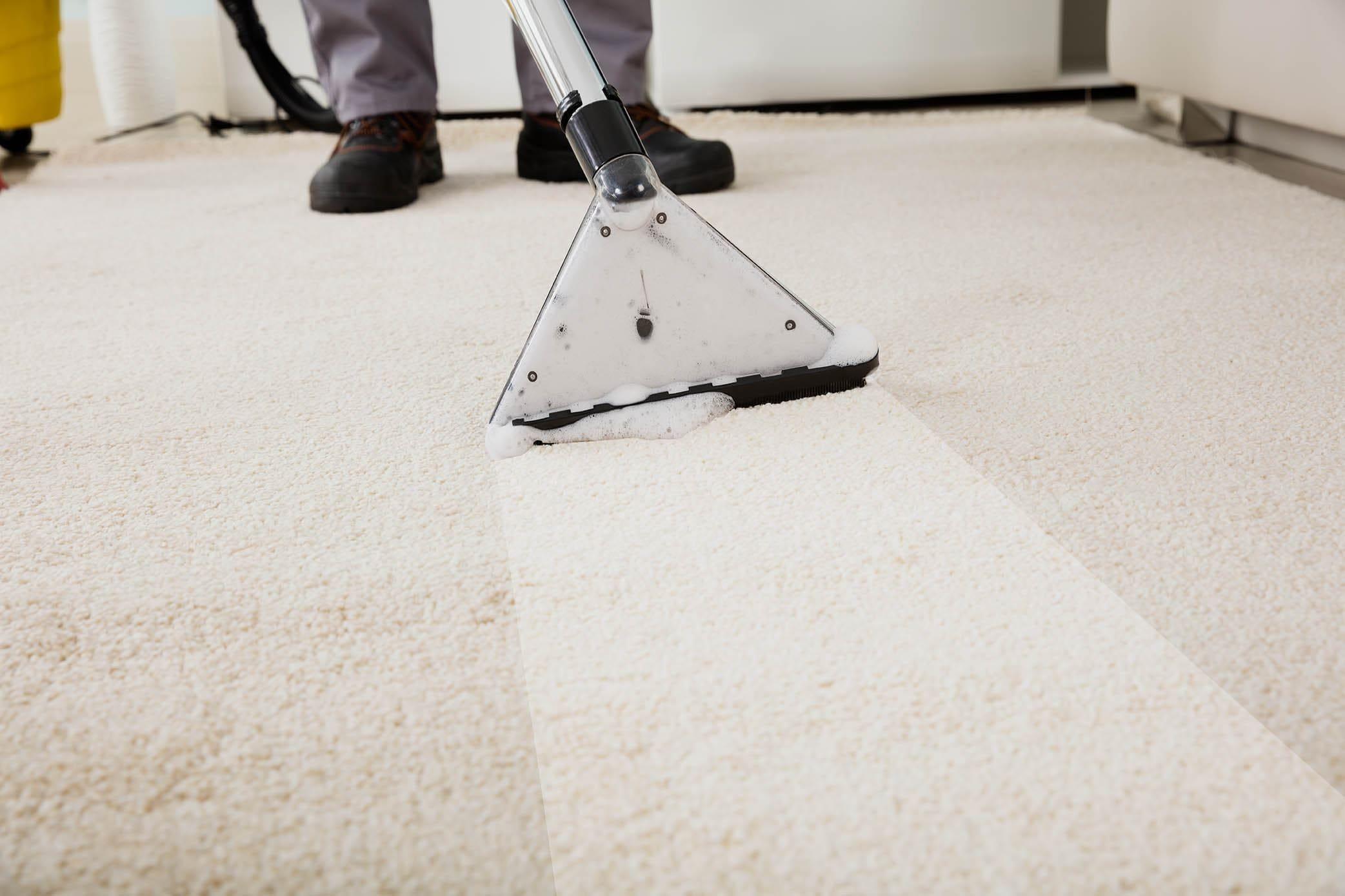 person vacuuming carpet