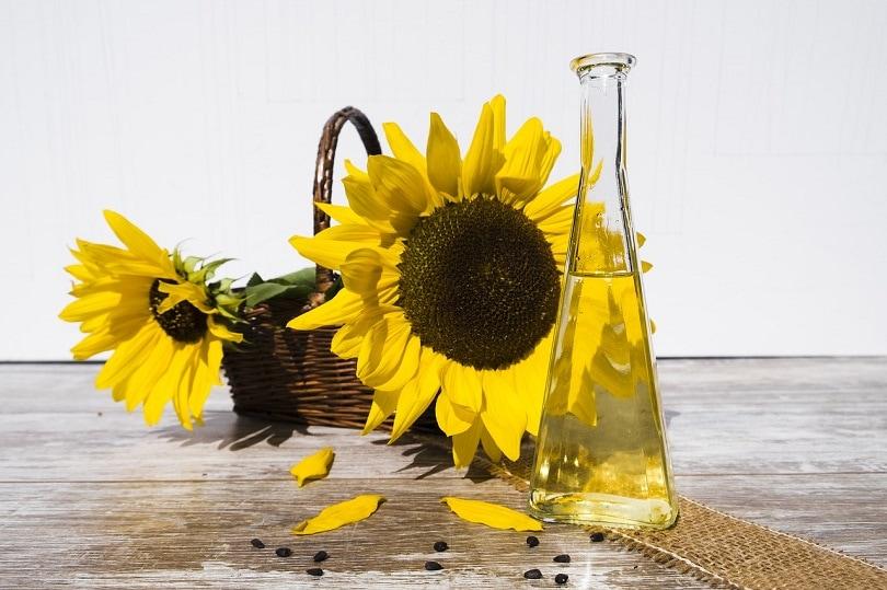 sunflower-oil-piaxbay
