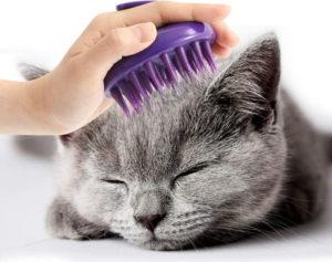 CeleMoon cat grooming brush_Amazon