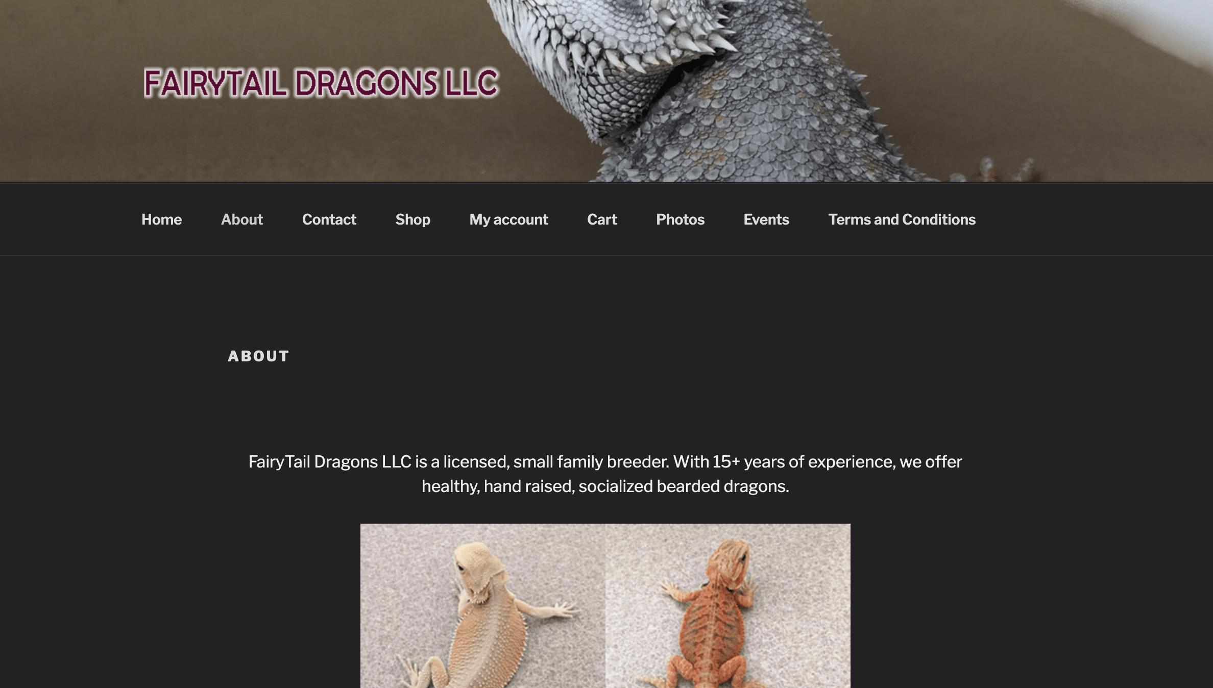 Fairytale Dragons LLC