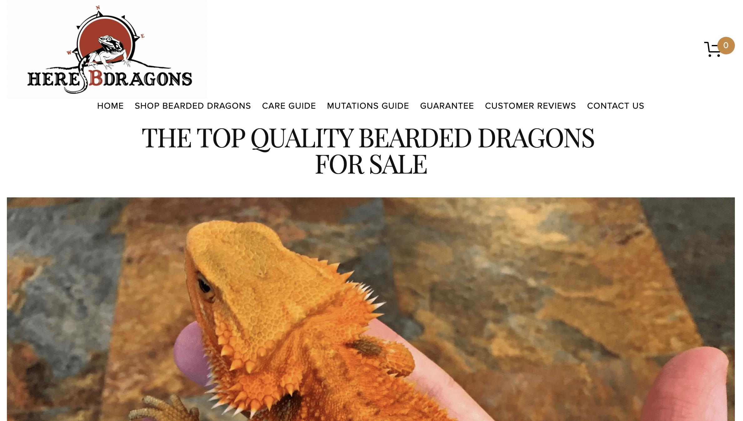Here B Dragons
