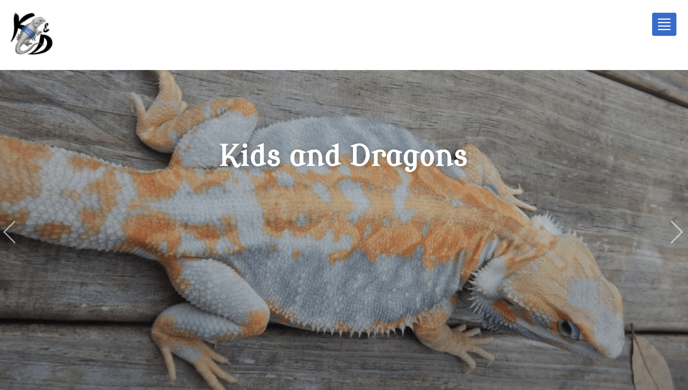 Kids and Dragons