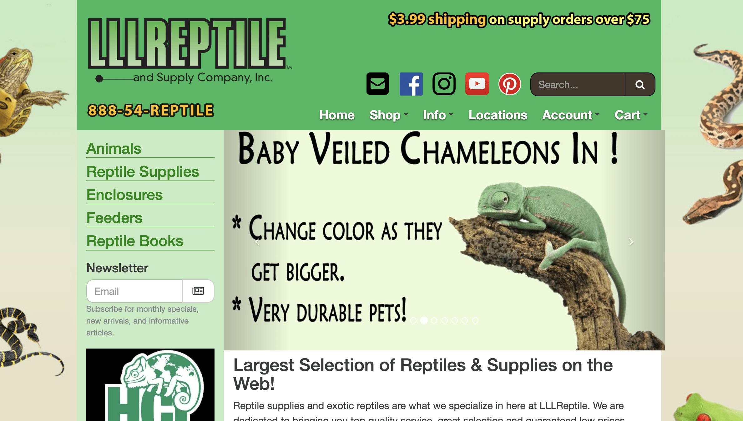 LLL Reptiles