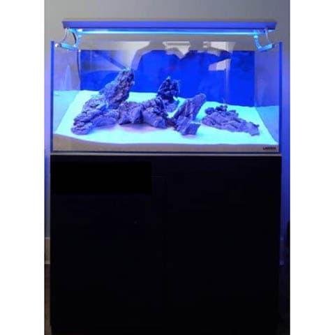 Landen 60P 25.4-Gallon Rimless Low-Iron Aquarium