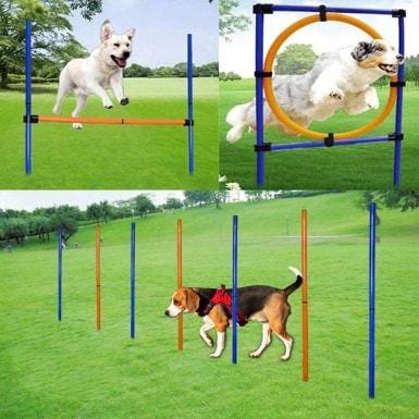 MelkTemn 3 in 1 Dog Agility Set