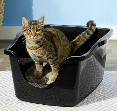 Nature's Miracle litter box_Chewy