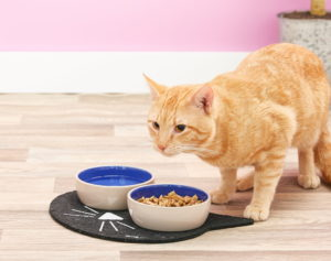 ORE Pet food mat_Chewy