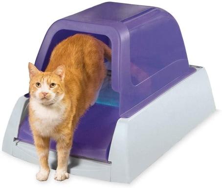 PetSafe Automatic litter box_Amazon