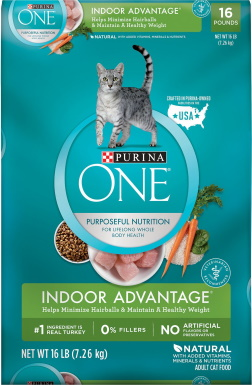 Purina ONE Dry Cat Food_Chewy