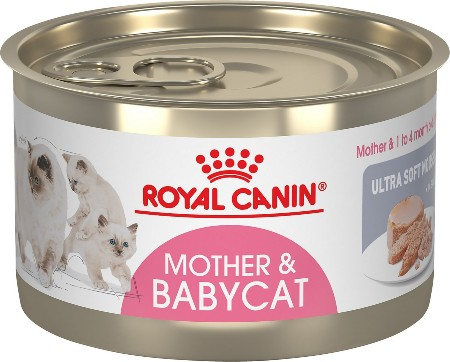 Royal Canin Mother and Babycat Ultra-Soft Mousse in Sauce