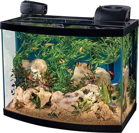 Tetra Connect Curved Aquarium Kit with WiFi Feeder