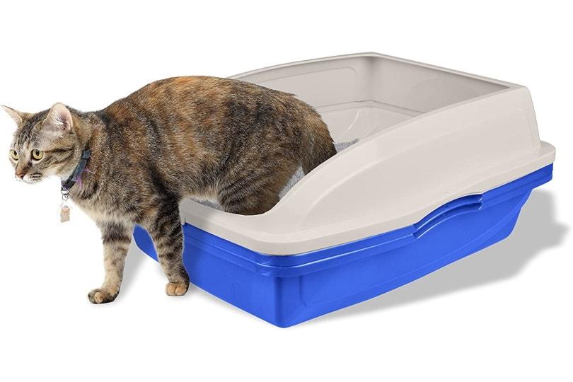 Van Ness CP5 cat litter box_Amazon