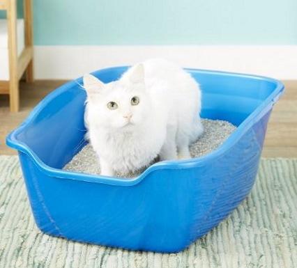 Van Ness Cat Litter Pan_Chewy