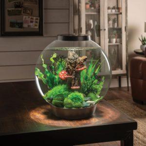 actual photo of biOrb CLASSIC LED Aquarium