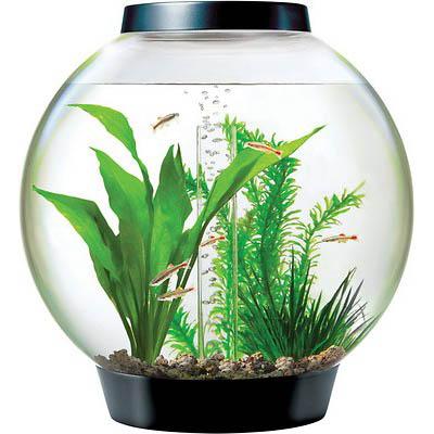 biOrb CLASSIC LED Aquarium