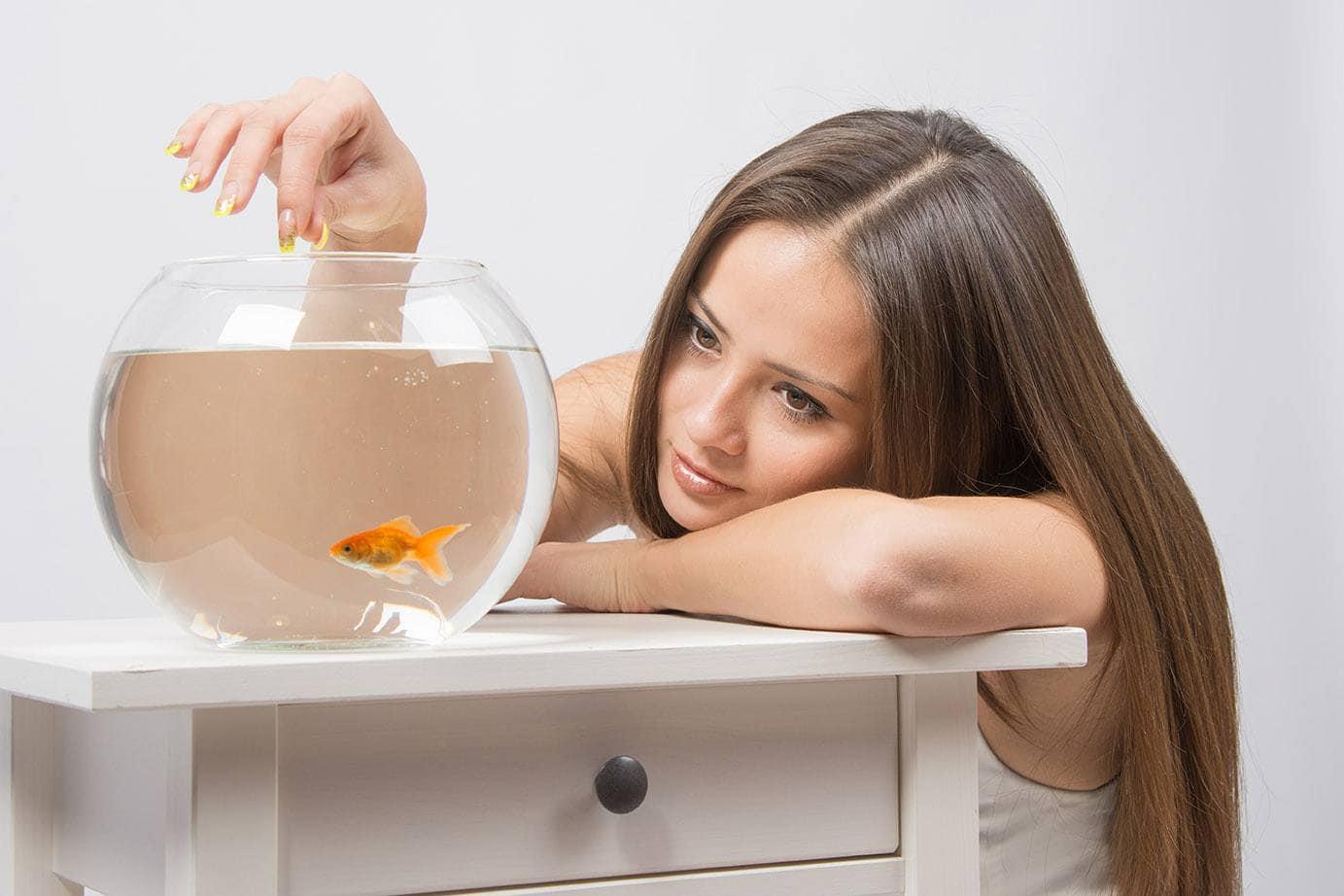 girl feeding goldfish