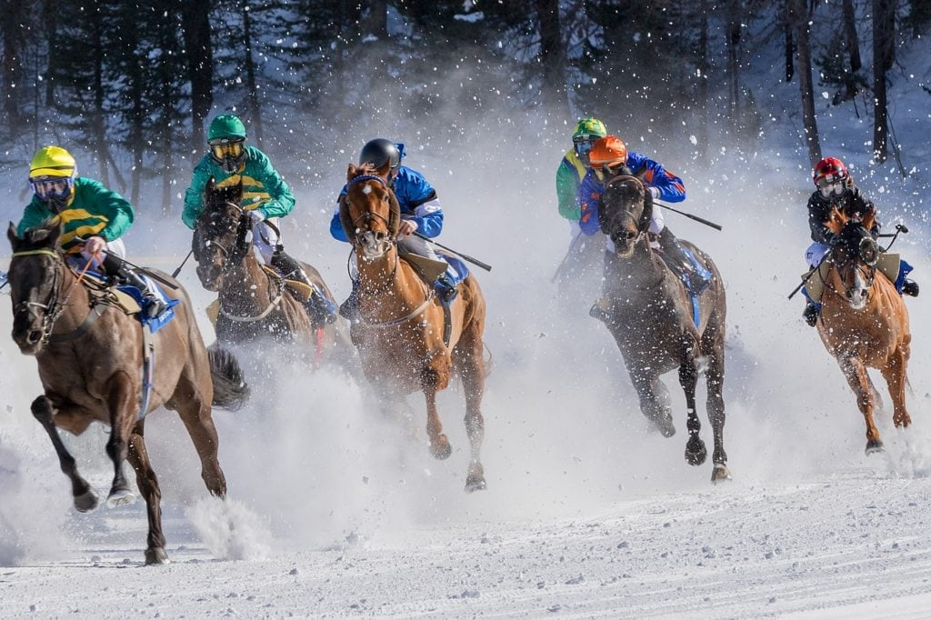 horse racing in the snow