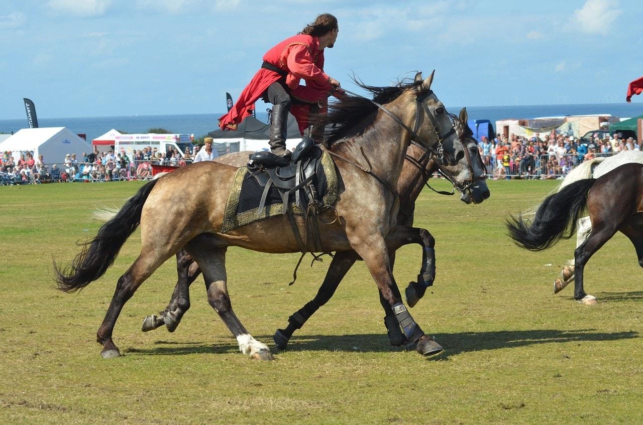 horse stunt rider
