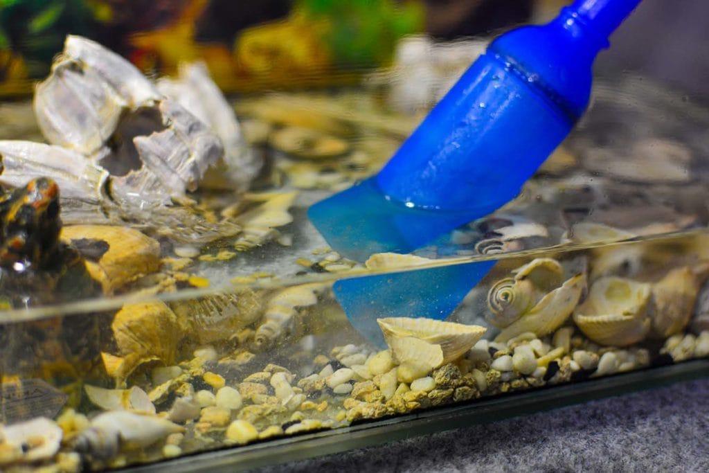 siphoning aquarium