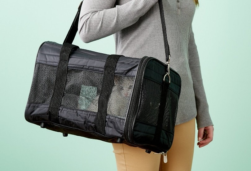 woman with her cat inside a carrier