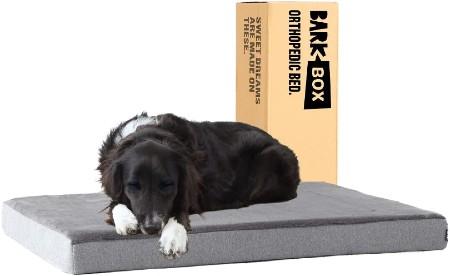 Barkbox Dog Bed Memory Foam