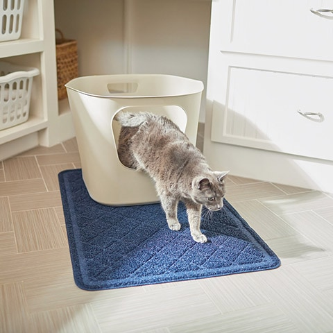 Frisco Leaf High-Sided Cat Litter Box