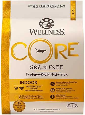 Wellness Core Grain Free Formula