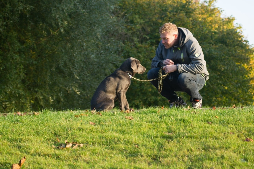 a man and his pet sitting on grass