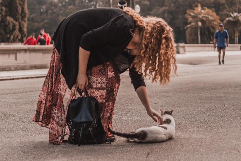 a woman saving a street cat