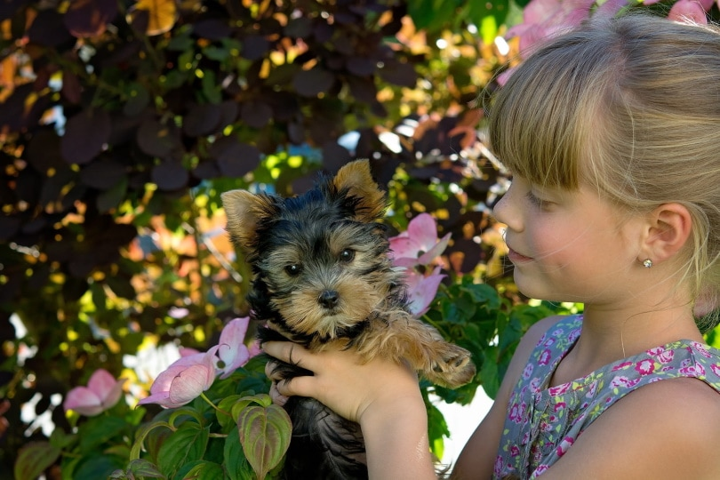 a young girl holding a puppy