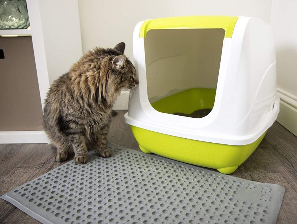 cat and Petlinks Cat Litter Mat