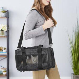 cat in Frisco Premium Travel Dog & Cat Carrier Bag