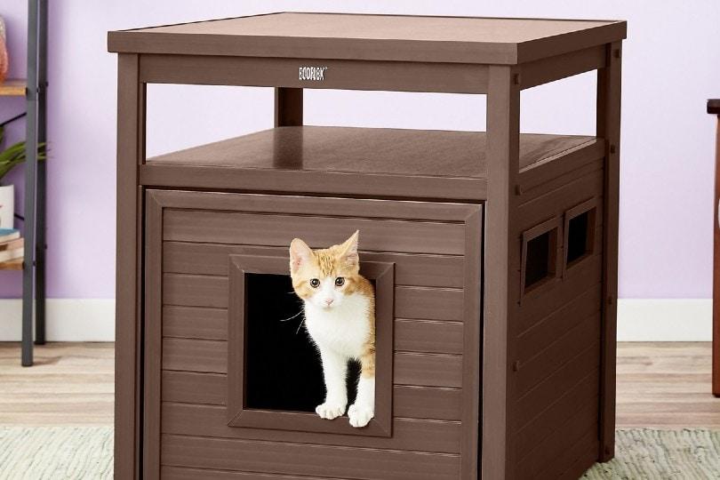 cat peeking out in cat litter furniture enclosure
