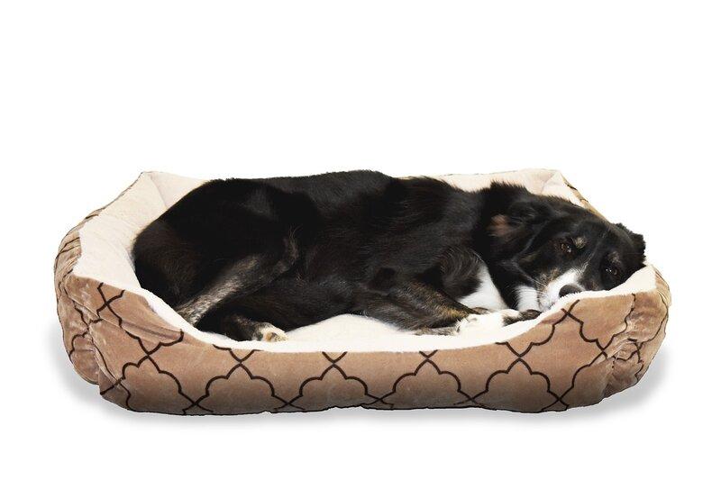 dog_in_bed_pixabay